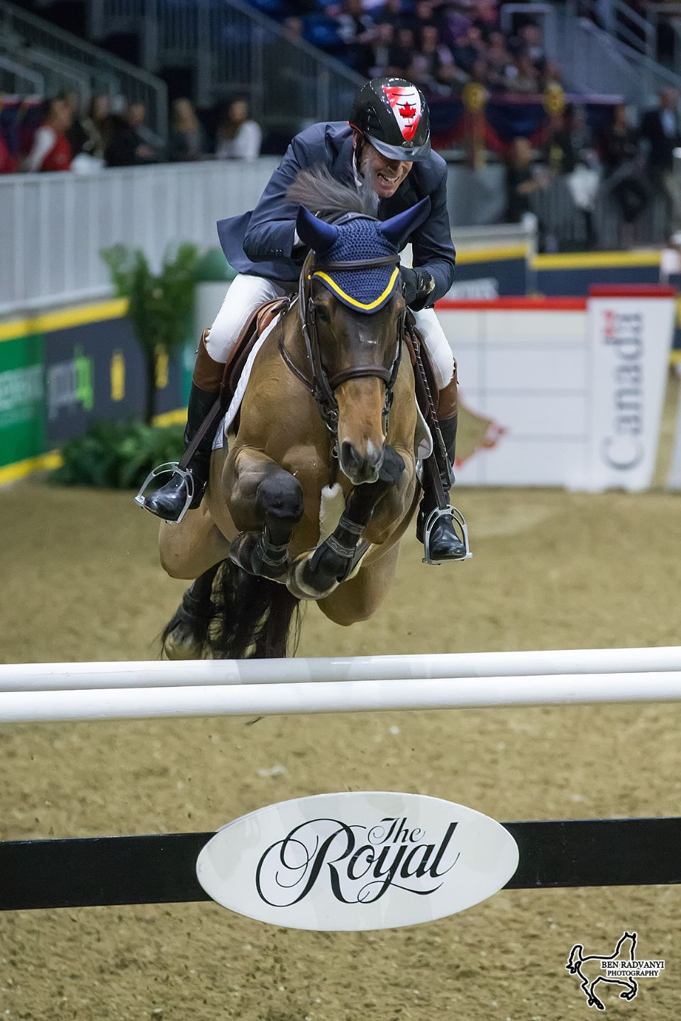 Millar Family Dominates Greenhawk Canadian Showjumping